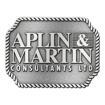 Alpin & Martin Consultants Ltd -  civil engineering, planning and survey company buckle with rope border