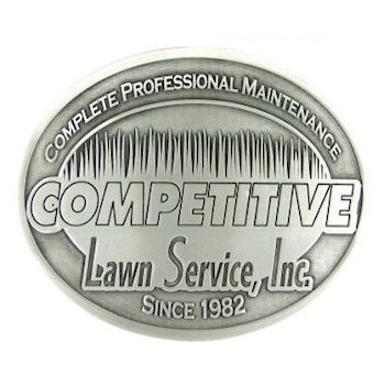 Oval lawn service belt buckle