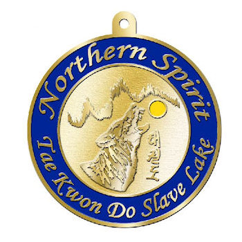 Northern Spirit Tae Kwon Do Martial Arts Medal